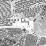 QM042 |Cimitero di Pedrinate |Planimetria generale_progetto